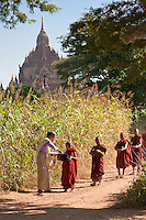 Myanmar, Burma. Bagan.  Woman Giving Rice to Young Novice Monks.