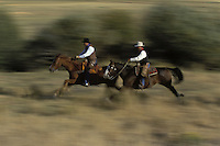 Cowboys on running horses, blurred. Ponderosa Ranch. Senaca OR.