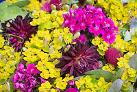 Dahlia, Dianthus, Euphorbia, Circium bouquet of cut flowers mixed in arrangement