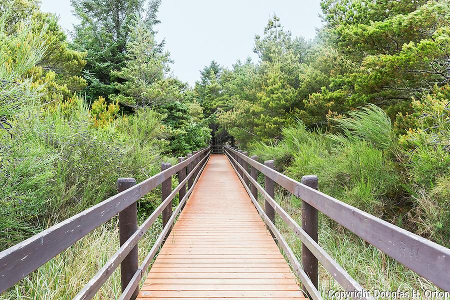 Boardwalk to wildlife sanctuary.  Oregon State Parks.  Astoria, Oregon