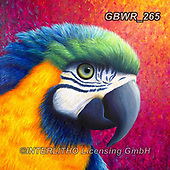 Simon, REALISTIC ANIMALS, REALISTISCHE TIERE, ANIMALES REALISTICOS, innovativ, paintings+++++,GBWR265,#a#, EVERYDAY ,parrot,parrots