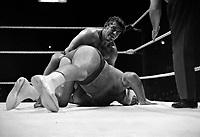 """Sujet : Combat  de lutte - Edouard Carpentier contre """"The Destroyer""""<br /> Date : 7 novembre 1971<br /> <br /> Photographe :  © Agence Québec Presse, Fonds Photo Moderne"""