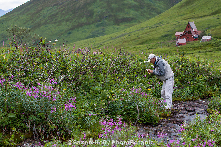 Photographer in heath tundra near Hatcher Pass, Alaska,  Independence Mine State Historical Park