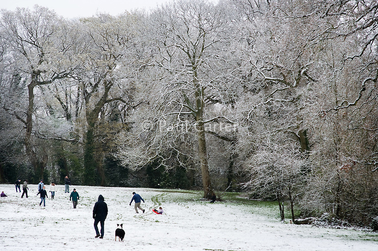Families playing in a snow covered park.