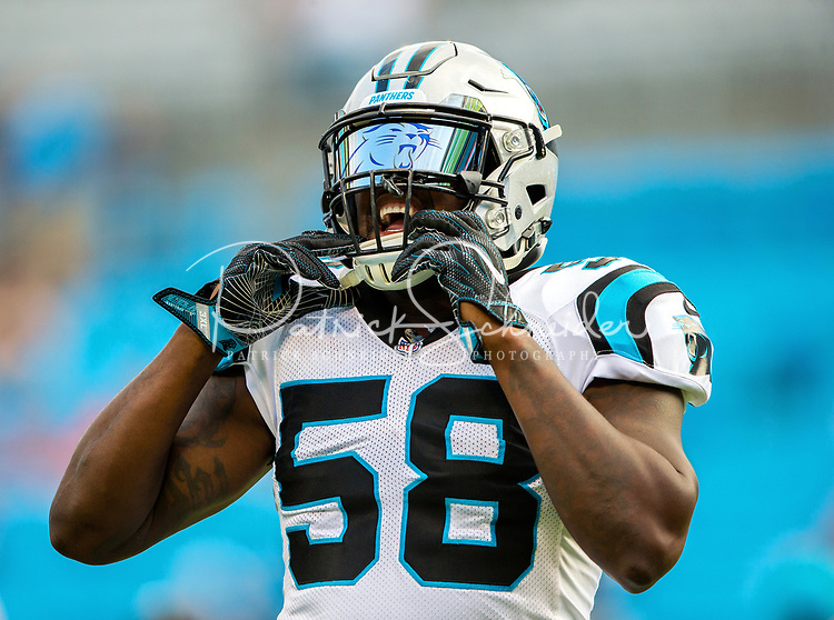 Photography of the Carolina Panthers vs The Houston Texans, during their NFL preseason at Bank of America Stadium in Charlotte, North Carolina.<br /> <br /> Charlotte Photographer - PatrickSchneiderPhoto.com