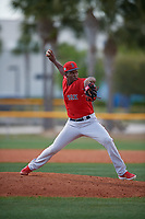 Boston Red Sox pitcher Joan Martinez (61) during a Minor League Spring Training game against the Tampa Bay Rays on March 25, 2019 at the Charlotte County Sports Complex in Port Charlotte, Florida.  (Mike Janes/Four Seam Images)