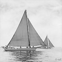 """Chesapeake Bay workboat """"Rosie Parks"""", Queen of the fleet, unmatched in beauty or speed sails to victory in the 1967 Deal Island Skipjack race. Photograph from the restored Limited Edition Skipjack print in the Fine Art """"Skipjack Sunday"""" collection.  Also available in sepia."""