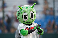 """Great Falls Voyagers mascot """"Orbit"""" entertains the crowd between innings of the game against the Helena Brewers at Centene Stadium on August 19, 2017 in Helena, Montana.  The Voyagers defeated the Brewers 8-7.  (Brian Westerholt/Four Seam Images)"""