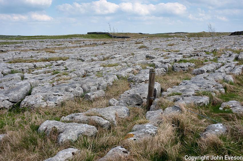 Limestone pavement, Malham, North Yorkshire.