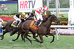 January 24, 2015:  #7 Consumer Credit with jockey Edgard Zayas on board wins the Sweetest Chant Stakes (G3) at  Gulfstream Park in Hallandale Beach, Florida. Liz Lamont/ESW/CSM