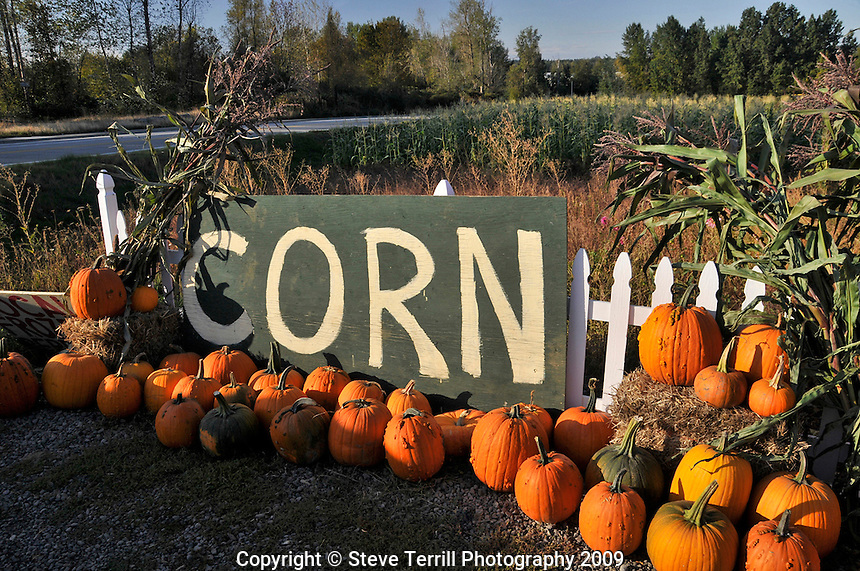 Corn sign in Fairview Oregon