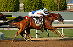 """ARCADIA, CA  SEP 26: #2 Improbable, ridden by Drayden Van Dyke, takes on #1 Take the One O One, ridden by Jose Valdivia, Jr., in the stretch of the Awesome Again (Grade l) """"Win and You're In Breeders' Cup Classic Division"""" on September 26, 2020 at Santa Anita Park in Arcadia, CA.  (Photo by Casey Phillips/Eclipse Sportswire/CSM."""