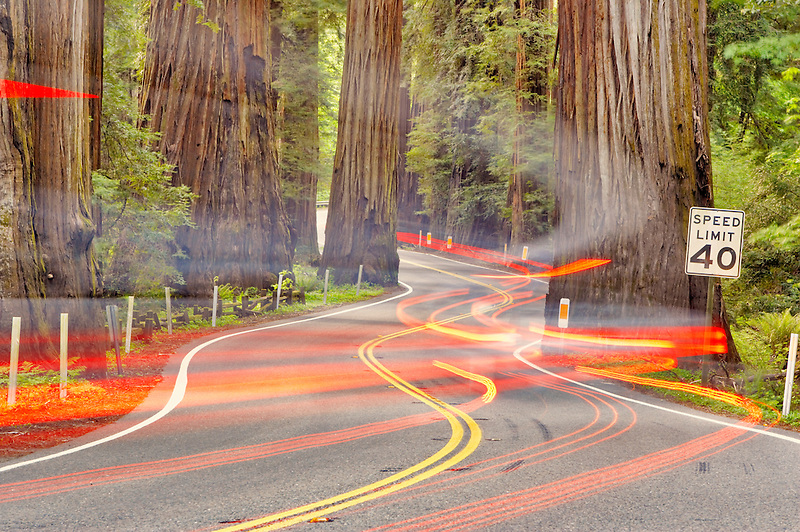 Road with tail lights through Richardson Grove State Park with redwoods. California