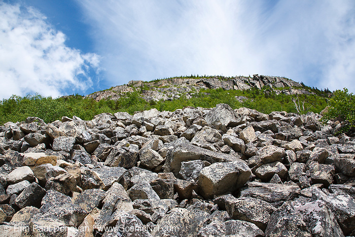 The cliffs of Whitewall Mountain from the Appalachian Trail (Ethan Pond Trail) in Zealand Notch of the White Mountains of New Hampshire during the summer months. This trail follows the old Zealand Valley Railroad bed.
