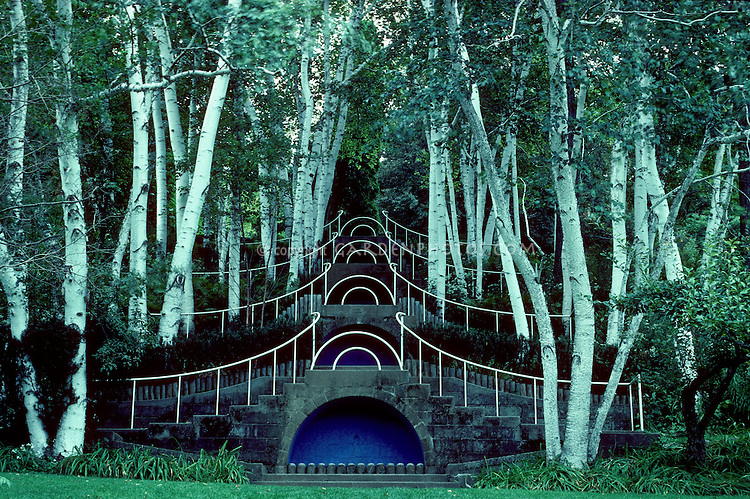 """""""Blue Steps"""" at Naumkeag, MA. Fletcher Steele's famous design within white Birches. Form and structure design of a garden, Betula utilis"""