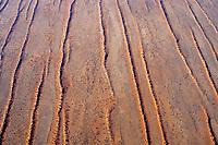 Dünenlandschaft der Kalahari: NAMIBIA, AFRIKA, 14.12.2018:  Dünenlandschaft der Kalahari