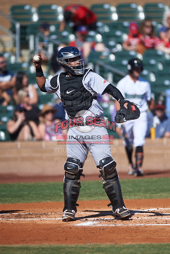 Salt River Rafters catcher Ronaldo Hernandez (24), of the Tampa Bay Rays organization, during the Arizona Fall League Championship Game against the Surprise Saguaros on October 26, 2019 at Salt River Fields at Talking Stick in Scottsdale, Arizona. The Rafters defeated the Saguaros 5-1. (Zachary Lucy/Four Seam Images)