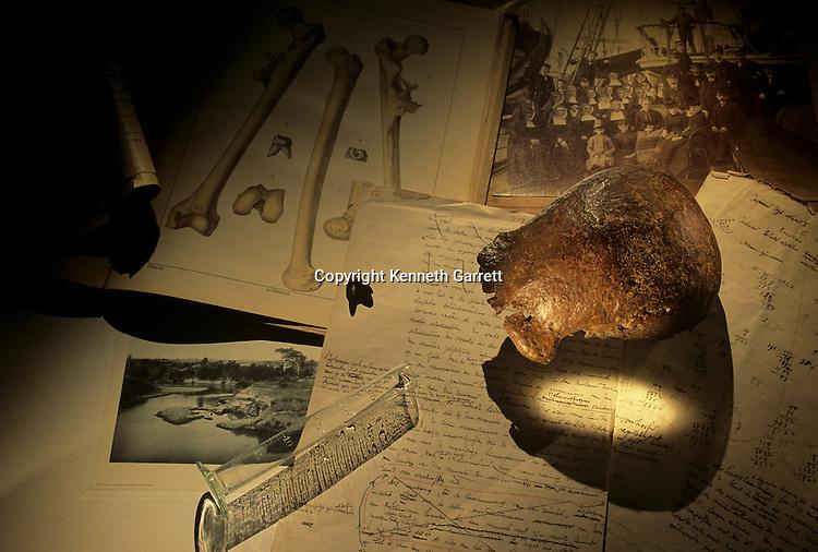 DOH, Expanding Worlds, Java Man, Skull cap & molar, Discovered by Eugene Dubois, 1887, Solo River, Indonesia, Homo erectus.