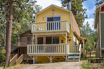 42741 Willow