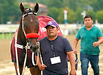 August 28, 2021: Letruska #6, ridden by jockey Irad Ortiz Jr. heads back to the shedrow after her win the Grade 1 Personal Ensign at Saratoga Race Course in Saratoga Springs, N.Y. Dan Heary/Eclipse Sportswire/CSM