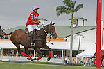WELLINGTON, FL - MARCH 05: 10 goaler, Facundo Pieres  of Orchard Hill is a contender in the C V Whitney Cup Final as Valiente defeats Orchard Hill 14 - 11,  at the International Polo Club, Palm Beach on March 05, 2017, in Wellington, Florida. (Photo by Liz Lamont/Eclipse Sportswire/Getty Images)