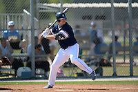 UW-Stout Blue Devils Chris Biederman (29) during the second game of a doubleheader against the Edgewood Eagles on March 16, 2015 at Lee County Player Development Complex in Fort Myers, Florida.  UW-Stout defeated Edgewood 8-2.  (Mike Janes/Four Seam Images)
