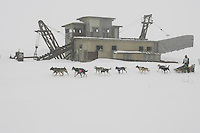 Jeff King passes Swanberg's gold dredge on the trail nearing Nome in foggy conditions.    End of the  2005 Iditarod Trail Sled Dog Race.