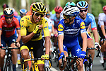 Julian Alaphilippe (FRA) Deceuninck-Quick Step and Yellow Jersey winner Egan Bernal (COL) Team Ineos at the start of Stage 21 of the 2019 Tour de France running 128km from Rambouillet to Paris Champs-Elysees, France. 28th July 2019.<br /> Picture: ASO/Alex Broadway   Cyclefile<br /> All photos usage must carry mandatory copyright credit (© Cyclefile   ASO/Alex Broadway)