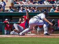 14 March 2014: Washington Nationals infielder Anthony Rendon slides home safely during a Spring Training game against the Detroit Tigers at Joker Marchant Stadium in Lakeland, Florida. The Tigers defeated the Nationals 12-6 in Grapefruit League play. Mandatory Credit: Ed Wolfstein Photo *** RAW (NEF) Image File Available ***