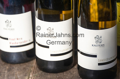 Italy, Alto Adige - Trentino (South Tyrol), Caldaro sulla strada del vino: local wines   Italien, Suedtirol, Kaltern an der Weinstrasse: Weine aus der Region