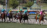 November 2, 2019: Belvoir Bay, ridden by Javier Castellano, wins the Breeders' Cup Turf Sprint on Breeders' Cup World Championship Saturday at Santa Anita Park on November 2, 2019: in Arcadia, California. Bill Denver/Eclipse Sportswire/CSM