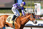 February 04, 2011. I'll Have Another and Mario Gutierrez win the Robert B. Lewis Stakes(GII) at Santa Anita Park in Arcadia, CA.