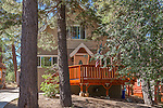 42725 WILLOW