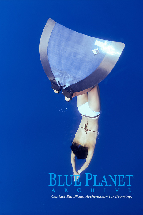 World freediving championships