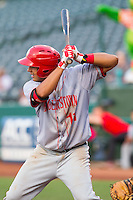 Drew Ward (11) of the Hagerstown Suns at bat against the Greensboro Grasshoppers at NewBridge Bank Park on May 20, 2014 in Greensboro, North Carolina.  The Grasshoppers defeated the Suns 5-4. (Brian Westerholt/Four Seam Images)