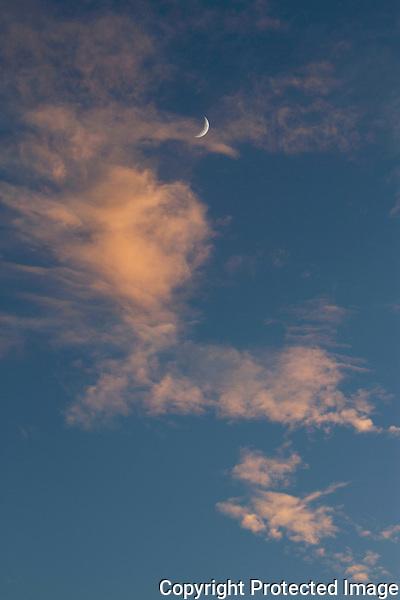 Ponto Moon