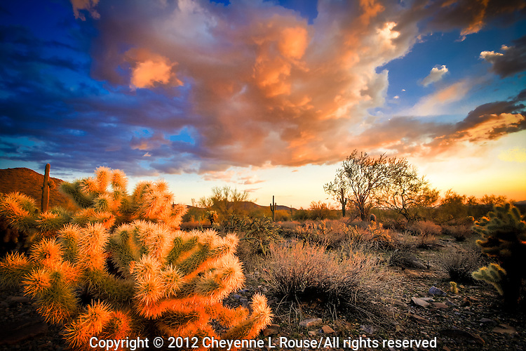 McDowell Mountain Desertscape - Arizona (color) - Scottsdale - Dramatic clouds
