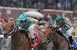 29 August 2009: Schneerson and jockey Edgar Praddo (blue cap) hold of Soda Jerk and jockey Jesus Castanon in a maiden race at Saratoga Race Track in Saratoga Springs, New York