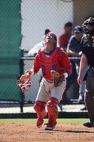 Philadelphia Phillies catcher Rodolfo Duran (10) during an Instructional League game against the Toronto Blue Jays on October 1, 2016 at the Carpenter Complex in Clearwater, Florida.  (Mike Janes/Four Seam Images)