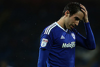 Peter Whittingham of Cardiff City during the Sky Bet Championship match between Cardiff City and Preston North End at Cardiff City Stadium, Wales, UK. Tuesday 31 January 2017