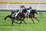 TOKYO,JAPAN-MAY 29: Makahiki #3 ,ridden by Yuga Kawada,wins the Japanese Derby at Tokyo Racecourse on May 29,2016 in Fuchu,Tokyo,Japan (Photo by Kaz Ishida/Eclipse Sportswire/Getty Images)