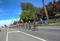 The peleton passes through the Ngaumutawa Rd finish point during stage five of the NZ Cycle Classic UCI Oceania Tour in Masterton, New Zealand on Tuesday, 26 January 2017. Photo: Dave Lintott / lintottphoto.co.nz