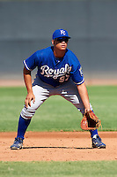Kansas City Royals minor league infielder Rainer Bello #97 during an instructional league game against the Seattle Mariners at the Peoria Sports Complex on October 2, 2012 in Peoria, Arizona. (Mike Janes/Four Seam Images)