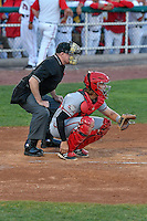 Billings Mustangs catcher Cassidy Brown (39) and home plate umpire Jake Botek during the game against the Orem Owlz in Game 2 of the Pioneer League Championship at Home of the Owlz on September 16, 2016 in Orem, Utah. Orem defeated Billings 3-2 and are the 2016 Pioneer League Champions. (Stephen Smith/Four Seam Images)