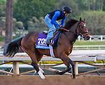 October 26, 2014:  Souper Colossal, trained by Eddie Plesa, exercises in preparation for the Sentient Jet Breeders' Cup Juvenile at Santa Anita Race Course in Arcadia, California on October 26, 2014. Scott Serio/ESW/CSM