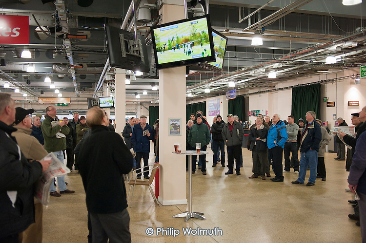 Men watch a televised horse race  at Doncaster racecourse.