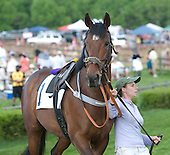 7th Mason Houghland Timber Stakes - Worried Man