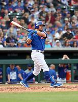 Kyle Schwarber - Chicago Cubs 2019 spring training (Bill Mitchell)