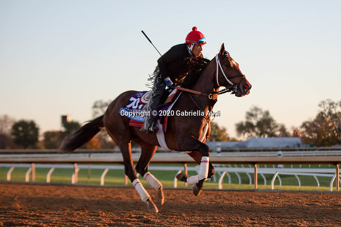 November 4, 2020: Keepmeinmind, trained by trainer Robertino Diodoro, exercises in preparation for the Breeders' Cup Juvenile at Keeneland Racetrack in Lexington, Kentucky on November 4, 2020. Gabriella Audi/Eclipse Sportswire/Breeder's Cup/CSM