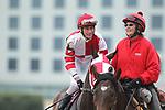 February 17, 2020: Jockey Joseph Rocco Jr. before the running of the Bayakoa Stakes at Oaklawn Racing Casino Resort in Hot Springs, Arkansas on Feburary 17, 2020. Justin Manning/Eclipse Sportswire/CSM